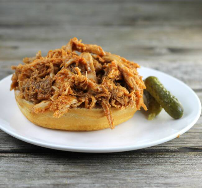 Pulled pork on a bottom of a bun.