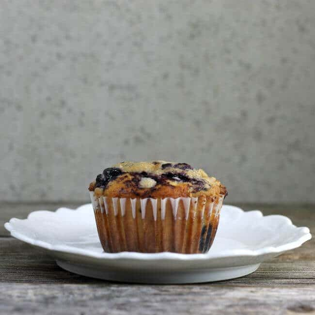 Blueberry muffin sitting on a white plate.