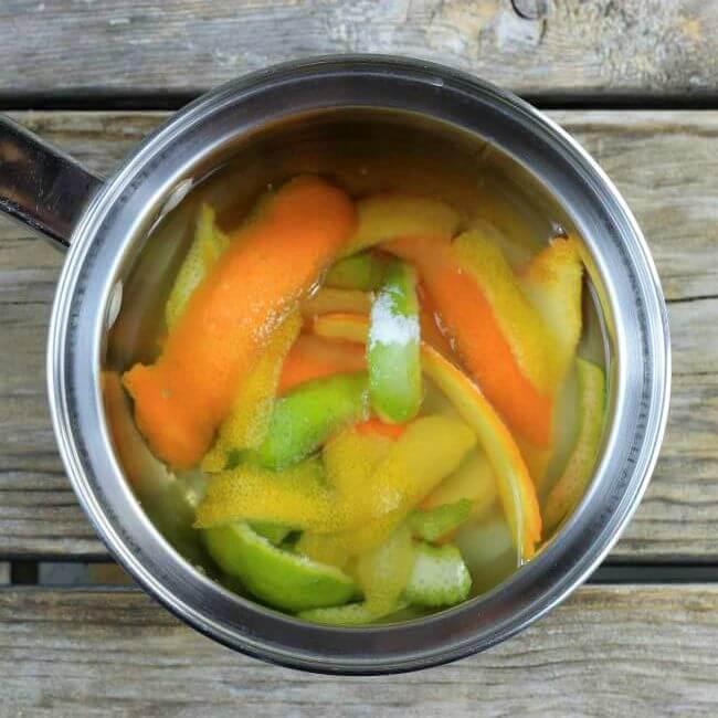 Orange, lime, and lemon peel in water in a saucepan.