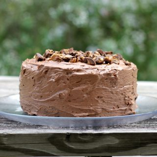Buckeye Fudge Layer Cake