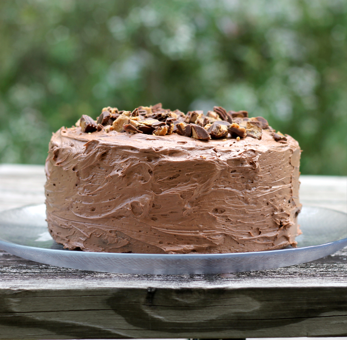 Buckeye Fudge Layer Cake