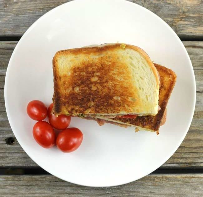 Pesto Grilled cheese on white plate with cherry tomatoes.