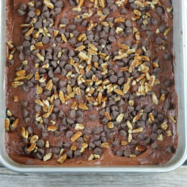 Turtle cake batter with chocolate chips and pecans in a baking pan.