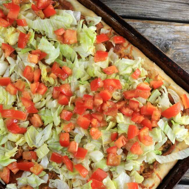 Tomatoes are sprinkled over top of the lettuce.