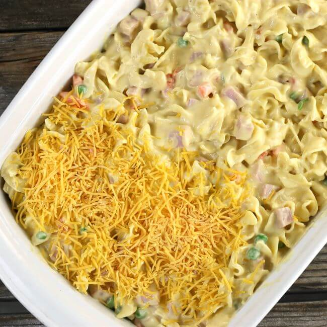 Cheese is sprinkle over top of the casserole.